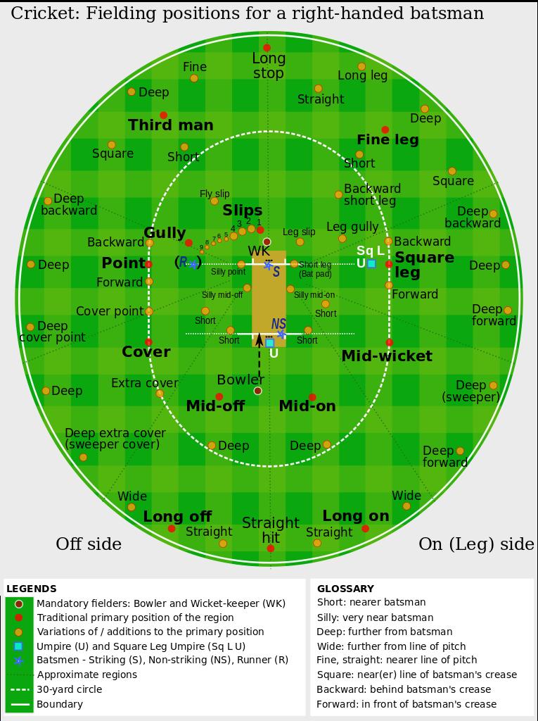 Fielding Positions in Cricket Ground cricket,ground,fielding,cricket,infographic,demonstration