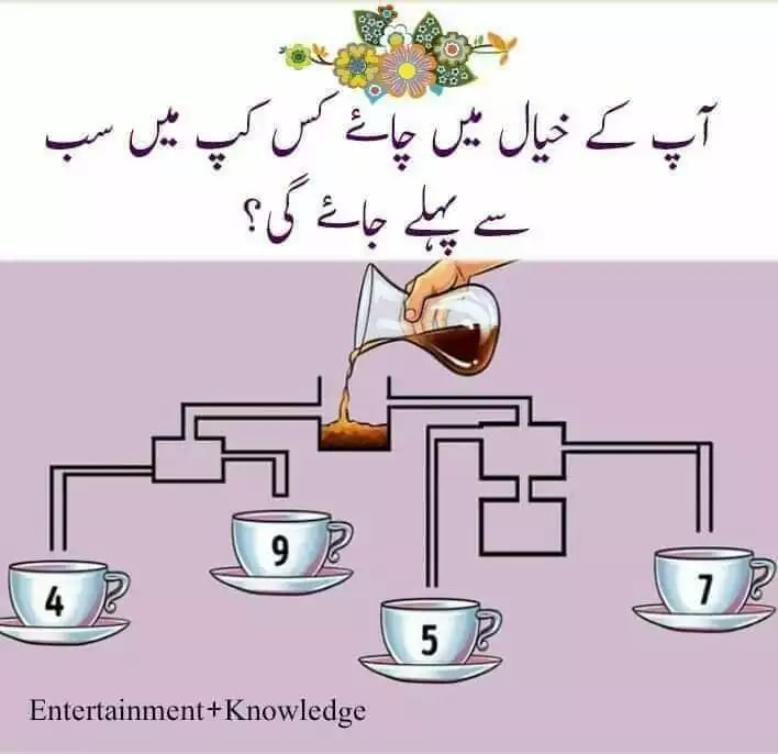 Cup and Tea puzzle tea,cattle,cup,fill,pipe,puzzle,IQ,riddle